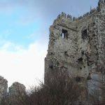 Ruine du château fort médiéval Drachenfels, donjon, Siebengebirge, Königswinter