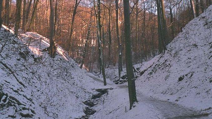 678px_nachtigallental_siebengebirge_hiver