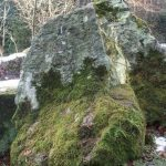 Siebengebirge nature, roches, trachyte
